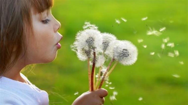 Por que a primavera piora as alergias?