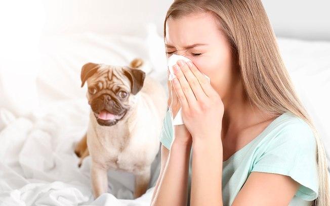 7 alérgenos campeões entre as causas de alergia