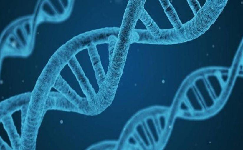 Alergia é um problema genético?